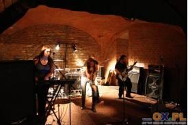 Festiwal MIY (koncert niedziela)