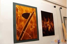 Wernisaż fotografii Katarzyny Pietraszko