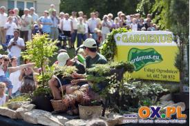 Dożynki w Goleszowie - sobota