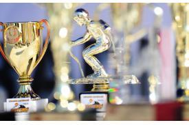 Puchar Złotego Gronia