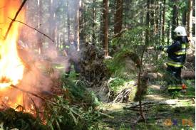 Ćwiczenia strażackie: Pożar lasu