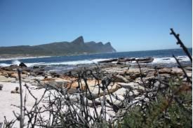 LOTE w RPA cz.4