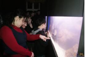 Wystawa akwarystyczna w Strumieniu