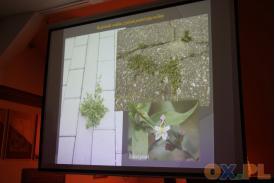 Wędrujące rośliny