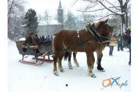 Zimowe Zawody Furmanów w Wiśle