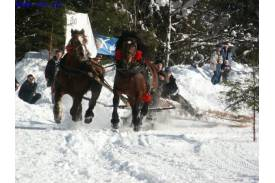 Zimowe Zawody Furmanów