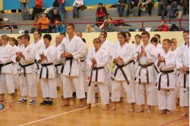 1. Międzynarodowe seminarium Karate