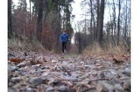 Nordic Walking Jesienne Impresje