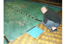 Pływanie w Cieszynie