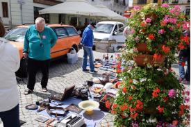TARGI STAROCI    -   Rynek Cieszyn 01.07.2018