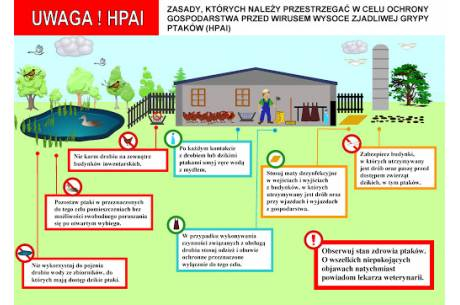 oficjalna infografika apelu