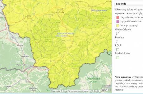 screen ze strony baza danych o lasach