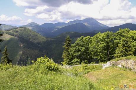 Beskidy zachęcają do wypoczynku w lesie. fot. ARC/OX.pl
