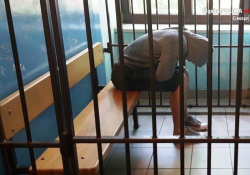 Przestępca wpadł  na gorącym uczynku w trakcie kolejnej kradzieży. Fot: arc.ox.pl