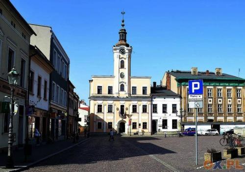 Burmistrz Skoczowa Mirosław Sitko podsumowuje / fot. arc.ox.pl