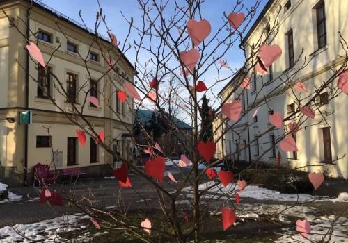 Drzewko Szczęścia i Miłości w Cieszynie / fot. SZK