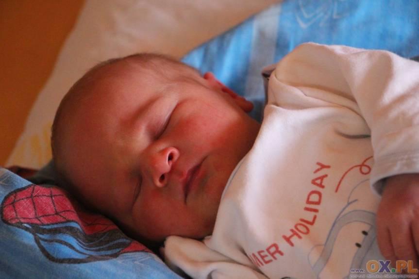 Paweł Przemyk z Chybia, syn Katarzyny