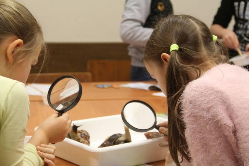 Cieszyński Uniwersytet Dziecięcy Akademii WSB przygotowuje się do nowego roku akademickiego / fot. Akademia WSB