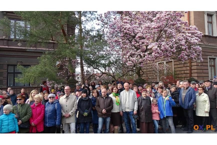 Spacer szlakiem magnolii spotkał się z dużym zainteresowaniem / fot. MSZ